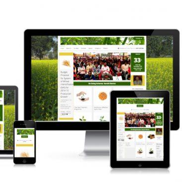 Webdesign Service Ranchi